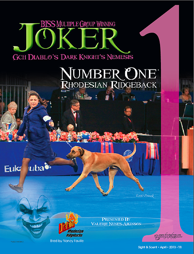 Joker_euk_cover.jpg